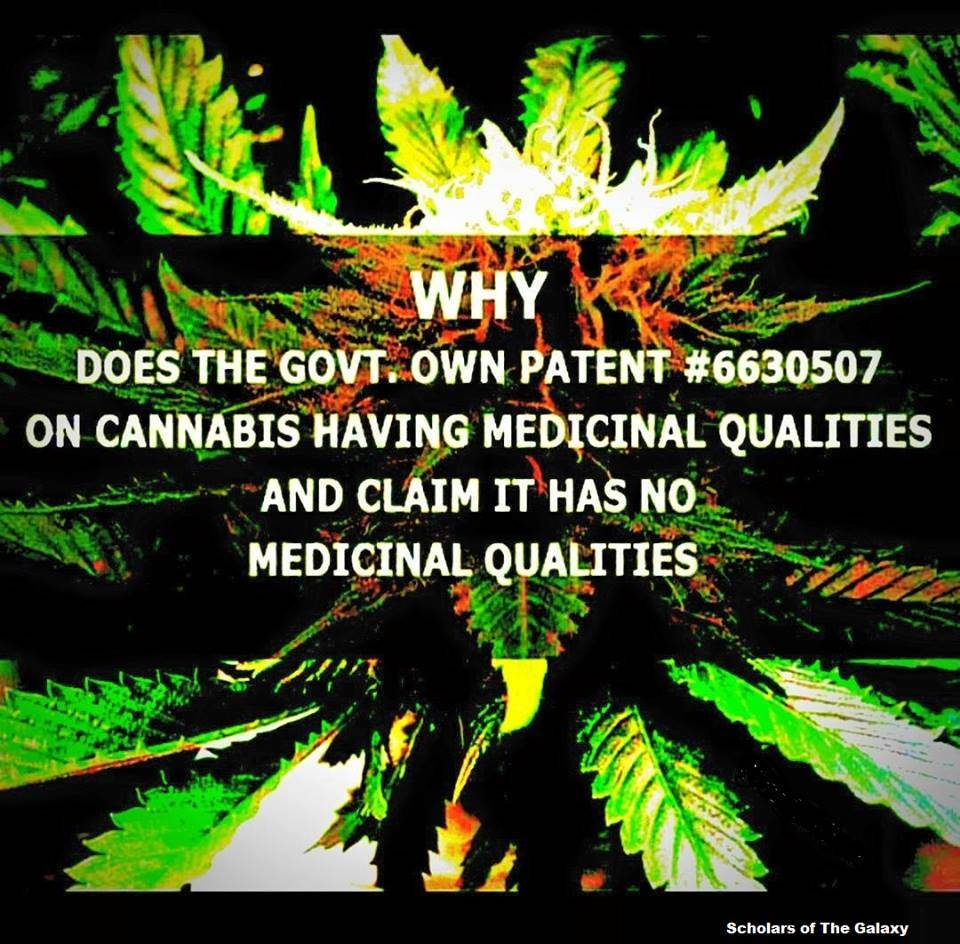 US government marijuana cannabis patent medical benefits