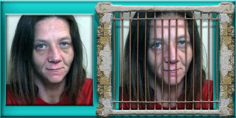 Andrea Leisgang sentenced 75 years in prison child sexual assault Edwardsville Illinois