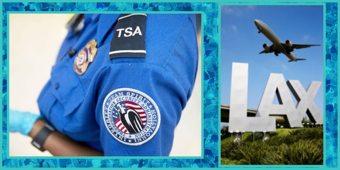 LAX former TSA agent gets jailed for tricking woman into showing baring her breasts
