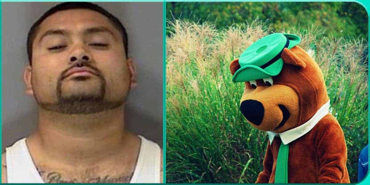 Manuel Paz Sanchez saw seen sees Yogi Bear Yellowstone 8 pounds meth found discovered by police