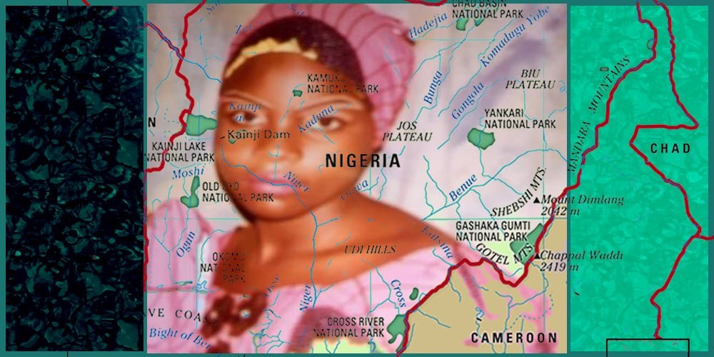 Nigerian Authorities Searching For 317 Schoolgirls Kidnapped By Armed Militia