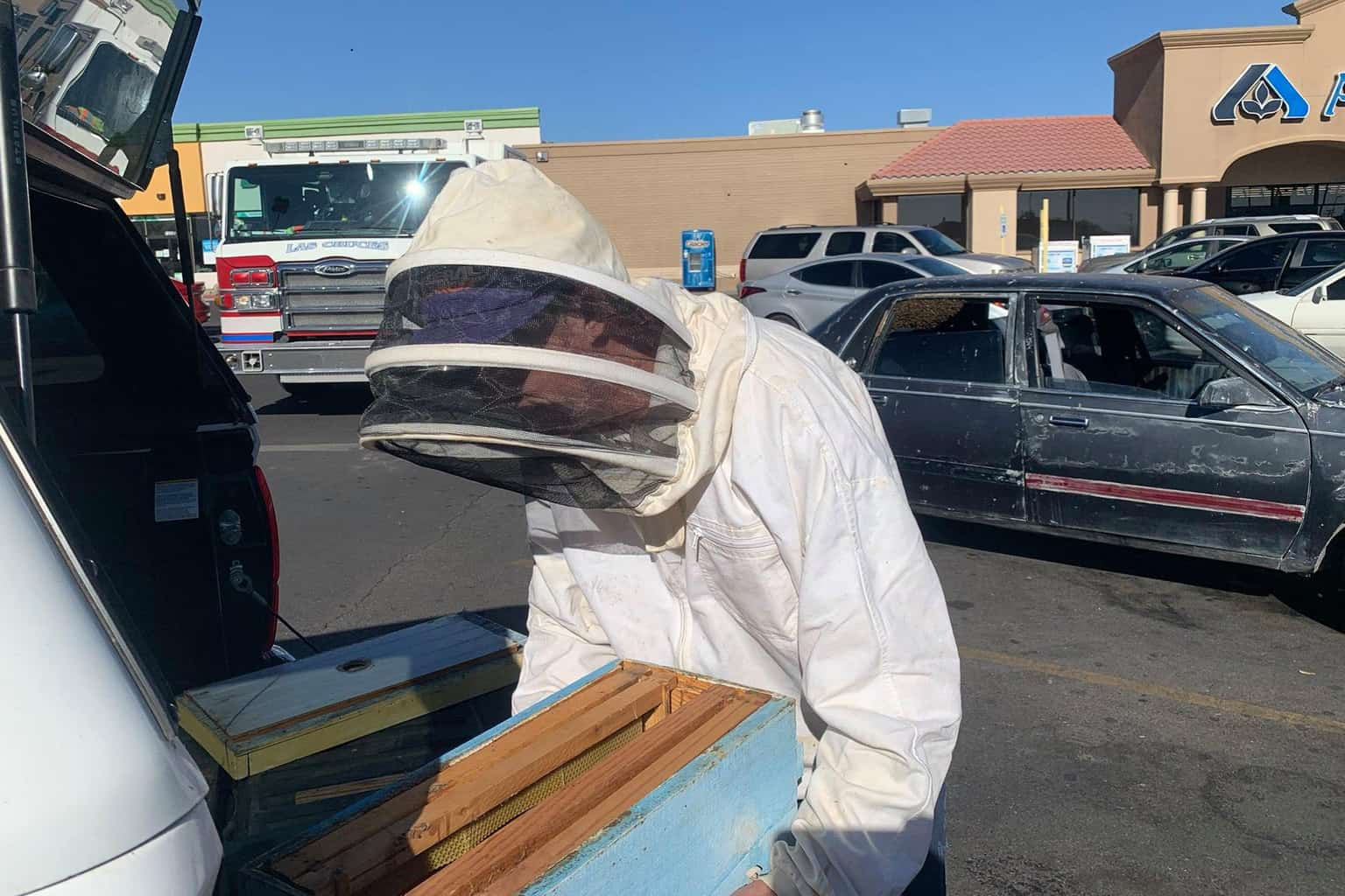 Off duty firefighter braves swarm of bees to rescue man 2