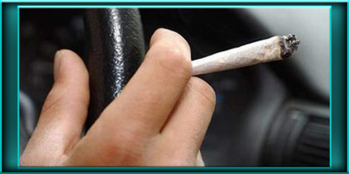 driving under the influence of marijuana study finds virtually no impairment