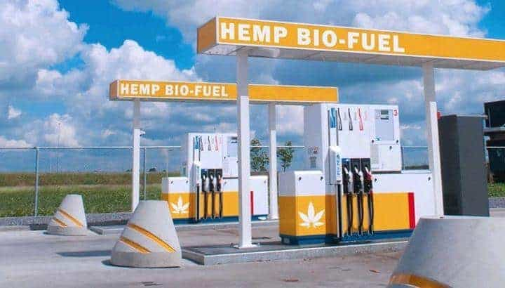 hemp cannabis biofuel bio-fuel bio fuel station