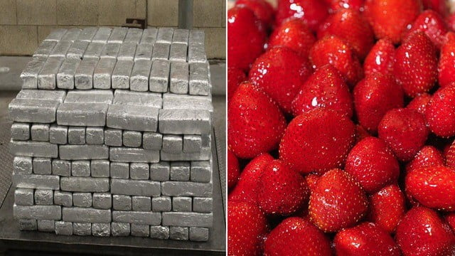 meth methamphetamine found trailer truck frozen strawberries texas port