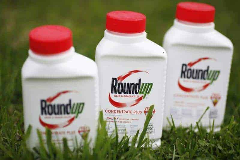 monsanto bayer roundup lawsuit may cost lawyer verdict aware champagne remark comment