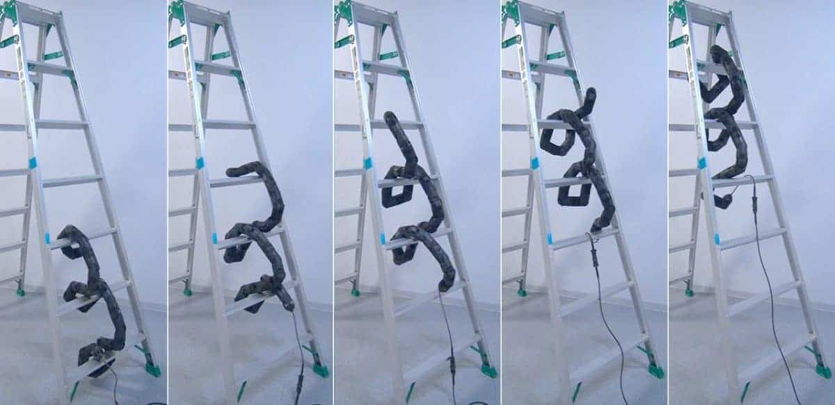 real life robot snake snakes and ladders climbs ladder climbing