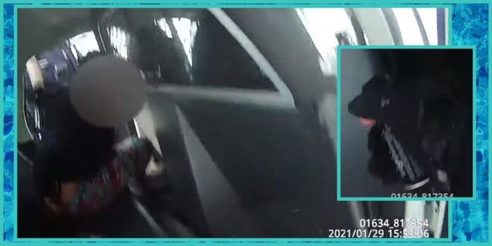 rochester new york police arrest pepper spray suicidal 9 year old girl