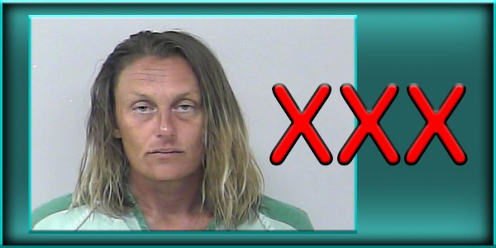 Theresa Ann Stanley Fort Pierce Florida St St. Lucie County jail stole sex toy used it in store
